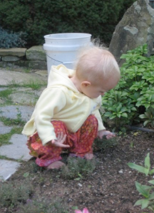 Evelyn playing in the dirt
