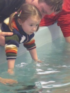 4-15-13 aquarium