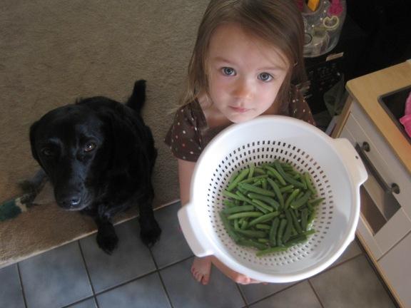 8-29-13 M beans
