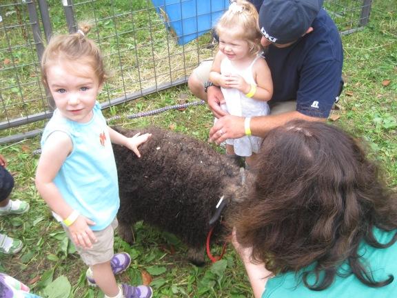 8-31-13 Farm Day Sheep
