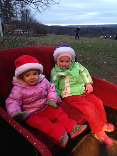 12-19-14 wickham sled