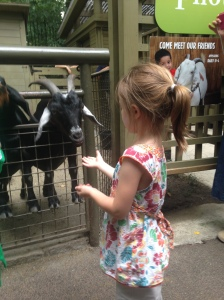 07-26-15 M NYC CPZ Goats
